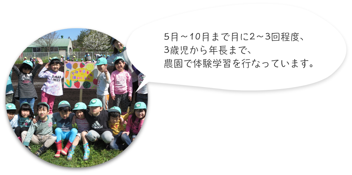 5月〜10月まで月に2〜3回程度、3歳児から年長まで、農園で体験学習を行なっています。